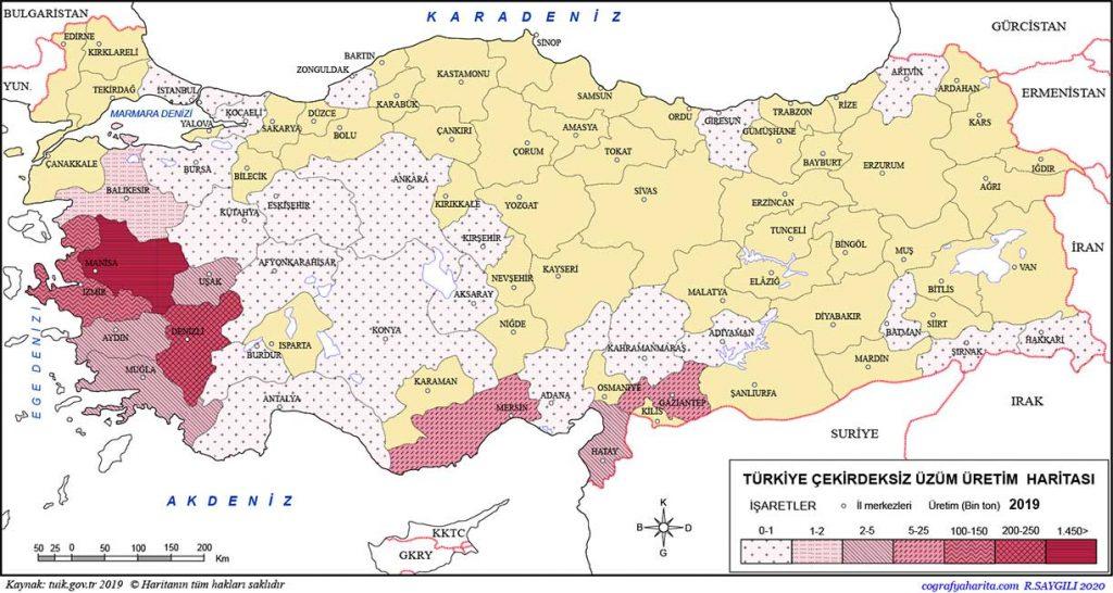 Turkiye 2019 cekirdeksiz uzum uretim haritasi - which fruits grow in turkey - It's essential to know which fruits grow in Turkey if you're planning to own farmland and plant your desired products. - https://scagriconsult.com/wp-content/uploads/2021/05/scagriconsult-main-logo.svg