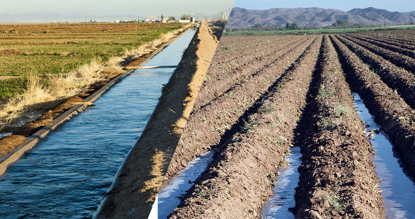farmland prices in turkey in 2021 are strongly affected by the region and irrigation capacity of the land. Talk to your Agricultural consultant before you buy it https://scagriconsult.com