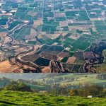Agriculture consulting - Best regions to buy farmland in Turkey https://scagriconsult.com