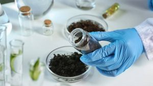 reliable soil testing in turkey by agricultural consultant https://scagriconsult.com